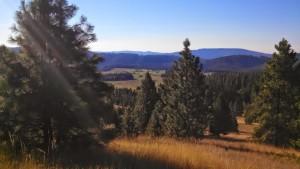 Summer in Idaho 2